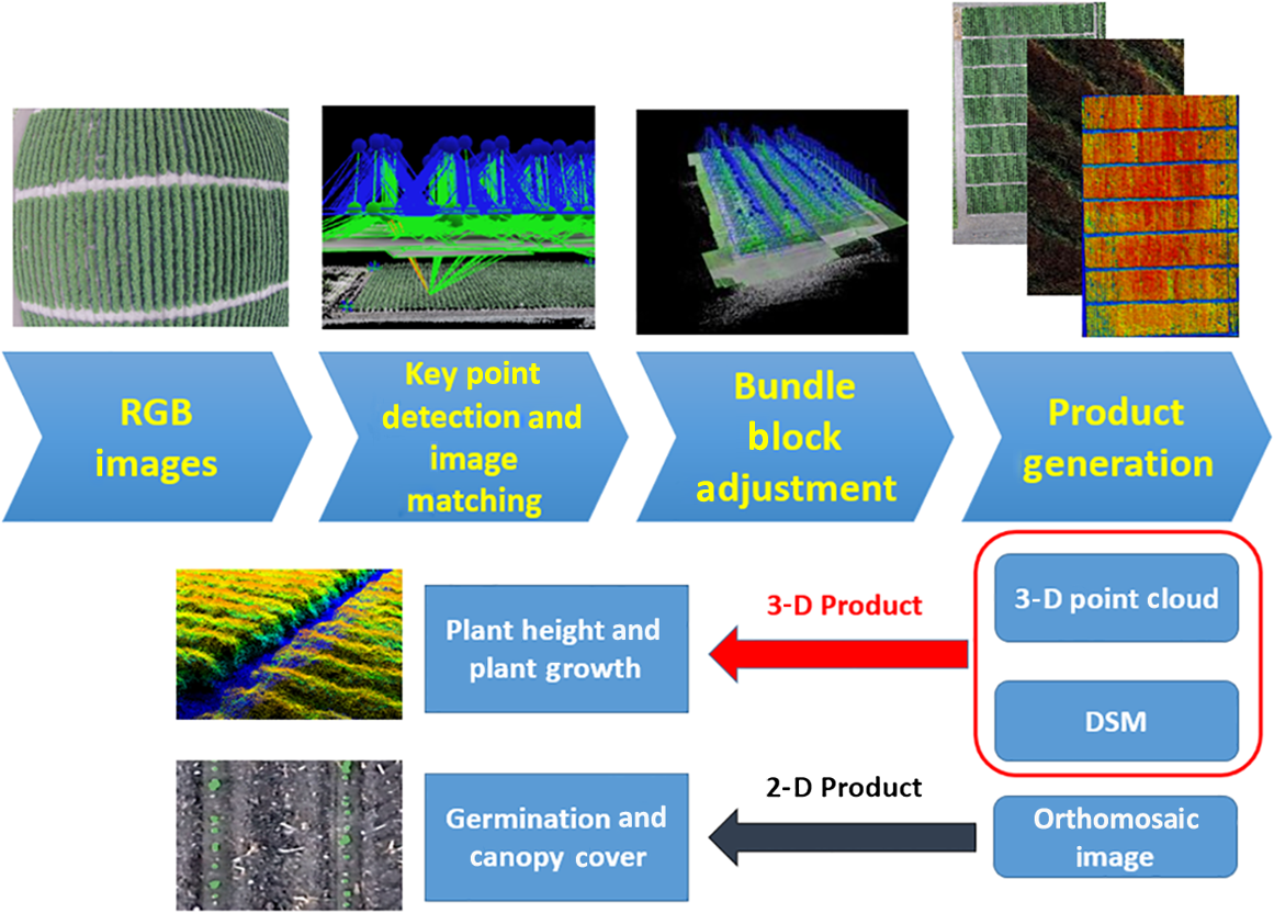 Cotton growth modeling and assessment using unmanned aircraft system