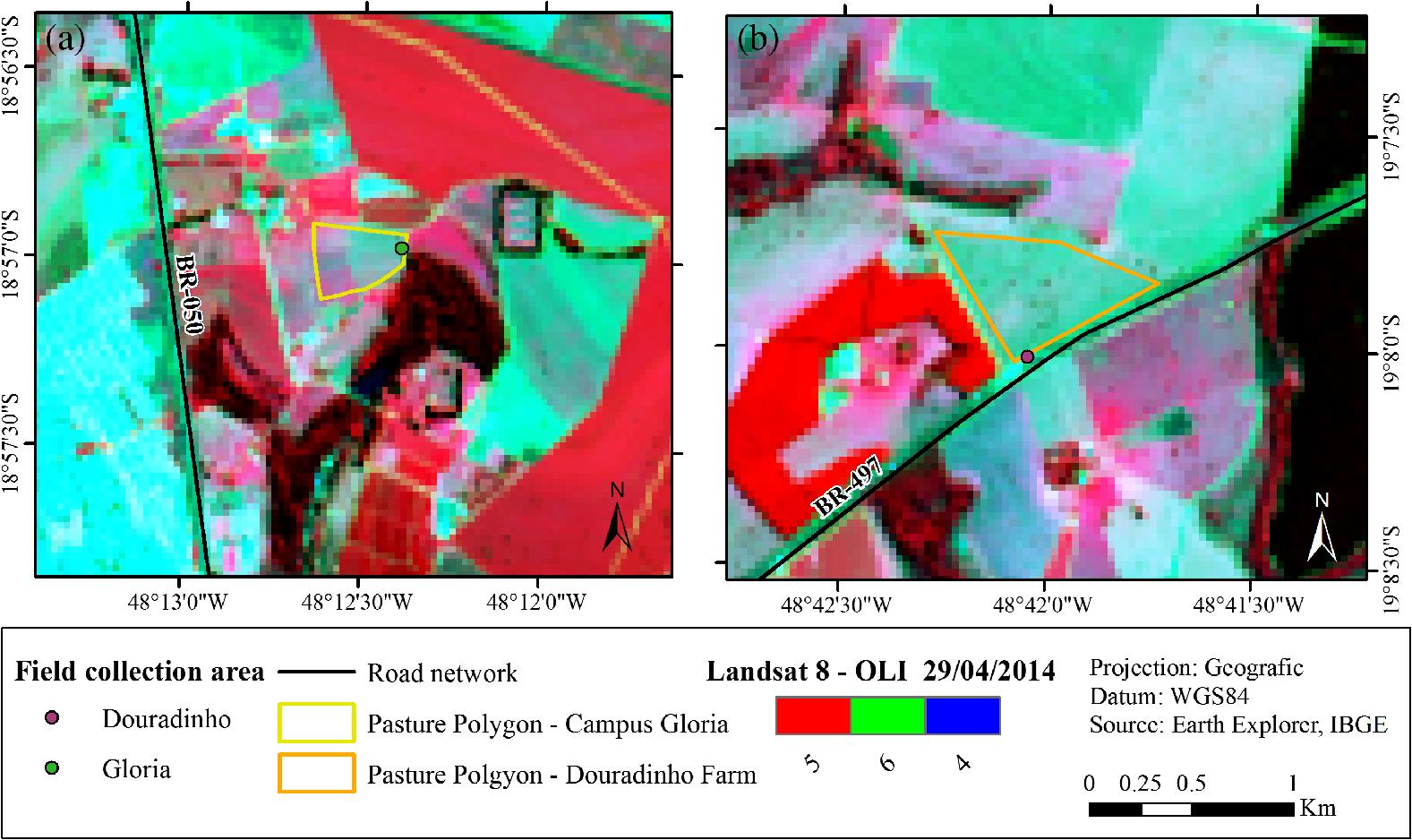 MODIS estimates of pasture productivity in the Cerrado based