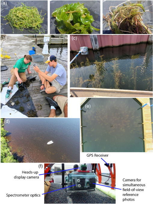 Multiscale collection and analysis of submerged aquatic