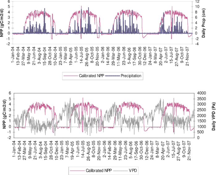 Calibration of a biome-biogeochemical cycles model for modeling the