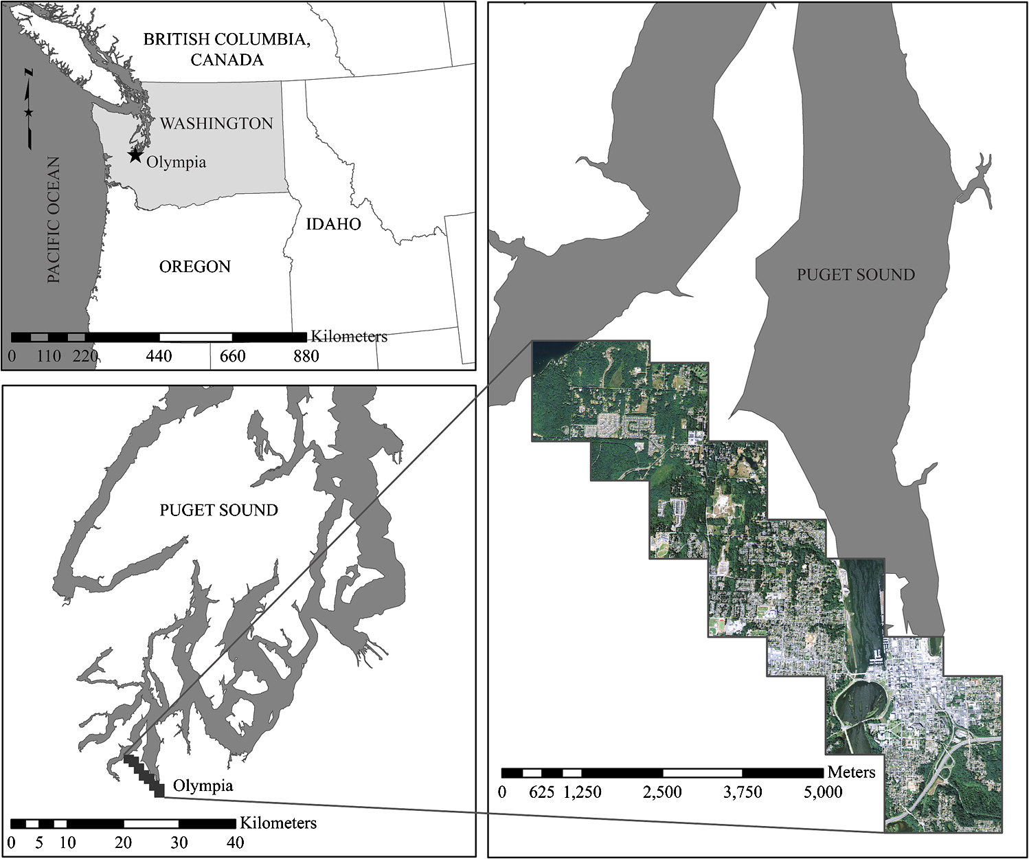 Evaluation of the contribution of LiDAR data and postclassification