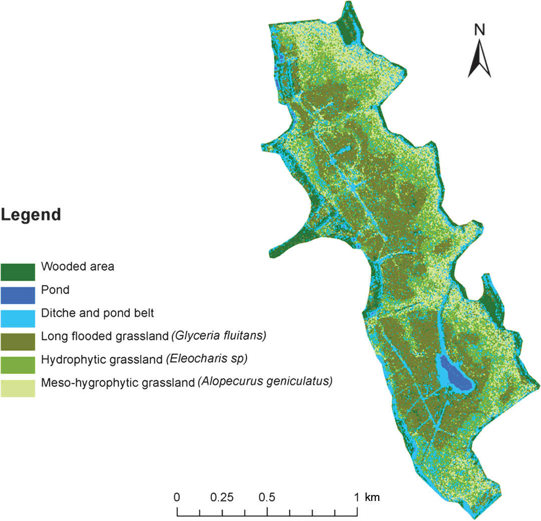 Map Of The Distribution Vegetation Formations In Wetland Areas Obtained From Series TerraSAR X Images Classification Was Performed Using