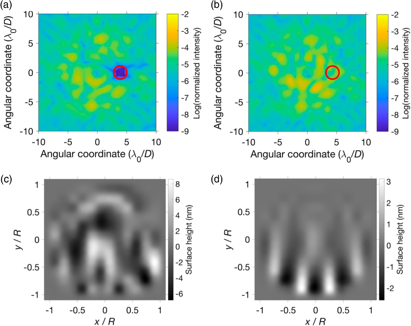 Demonstration of an electric field conjugation algorithm for