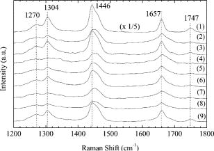Biochemical analysis of human breast tissues using Fourier