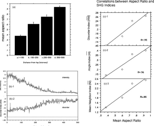 Quantitative analysis of structural disorder in