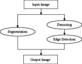 Combined image-processing algorithms for improved optical coherence