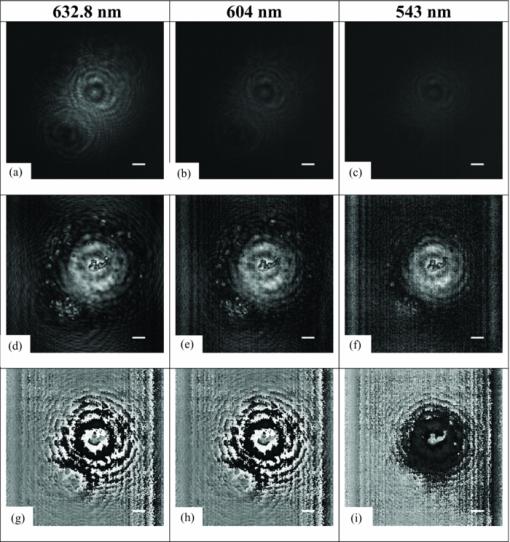 Lensless multispectral digital in-line holographic microscope