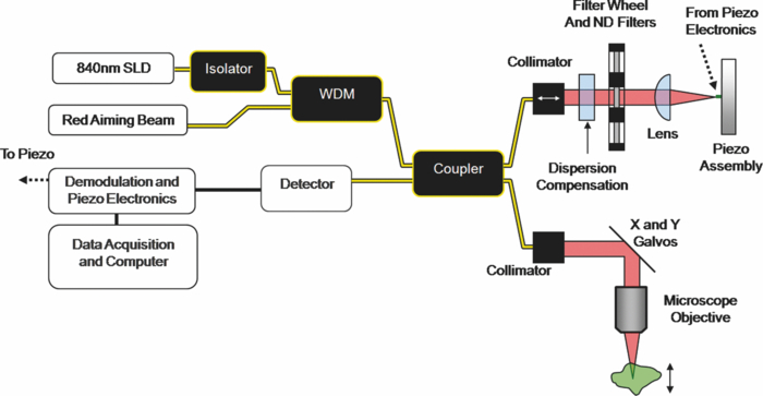 Design of a handheld optical coherence microscopy endoscope