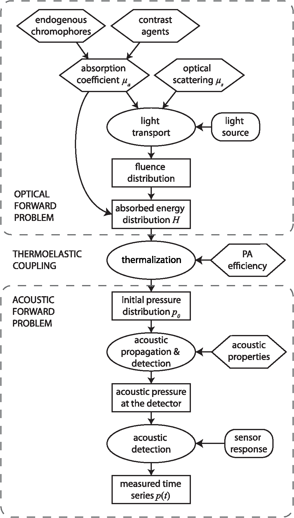 Quantitative Spectroscopic Photoacoustic Imaging A Review Lm 317 T Related Keywords Suggestions Long Tail The Resulting Pulse Is Detected By Sensor In Measured Pa Time Series Pt P