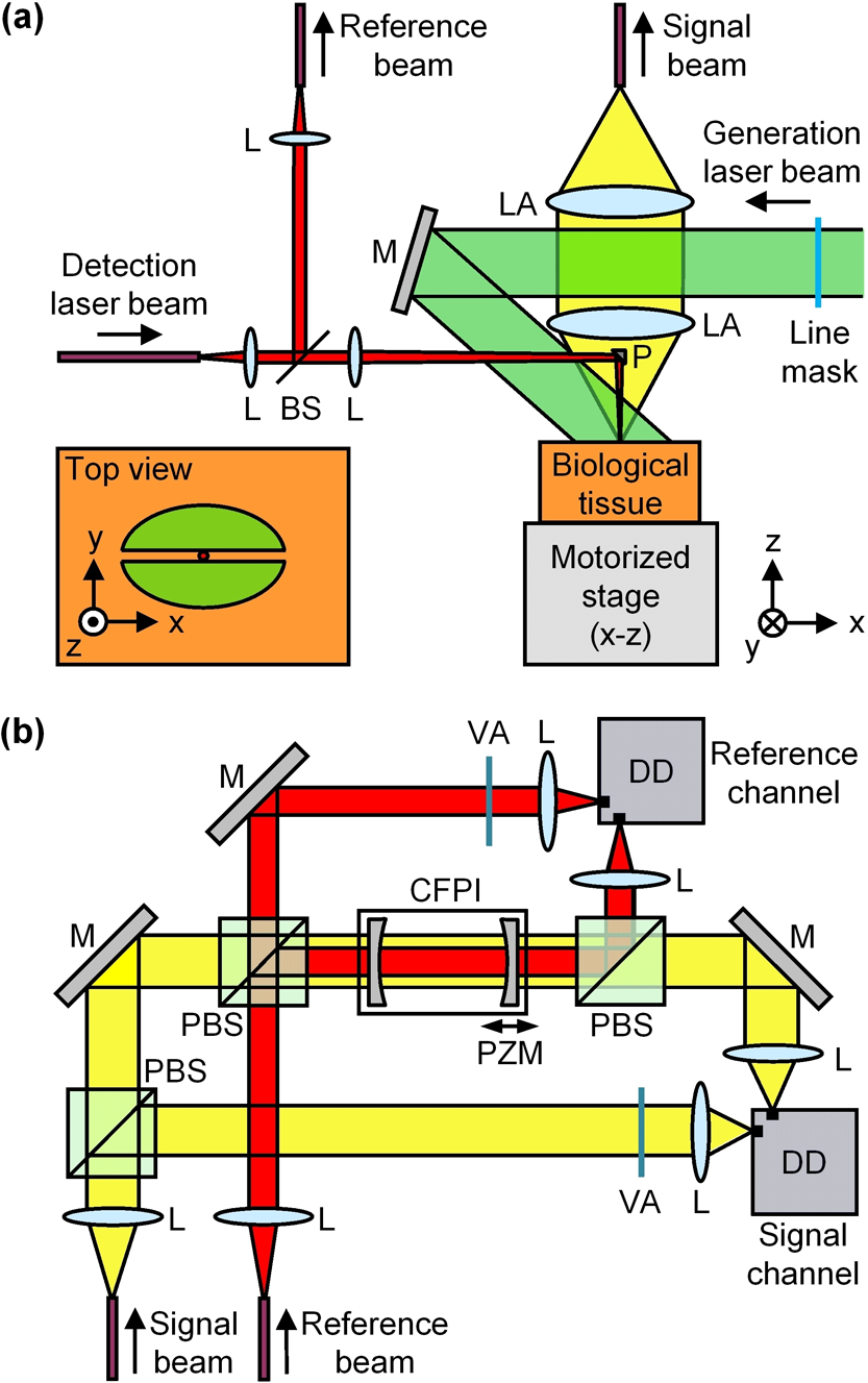 Non Contact Biomedical Photoacoustic And Ultrasound Imaging Noncontact High Voltage Detector Scheme B Schematic Diagram Of The Cfpi In Differential Configuration Pbs Polarizing Beam Splitter Pzm Piezoelectrically Actuated Mirror Mount Va