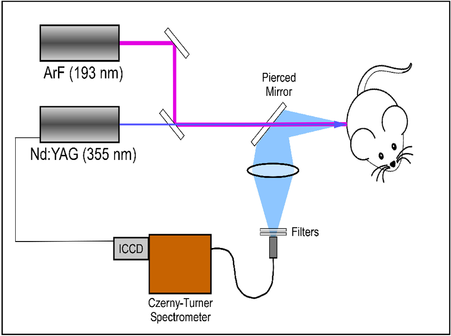 Comparative evaluation of differential laser-induced perturbation