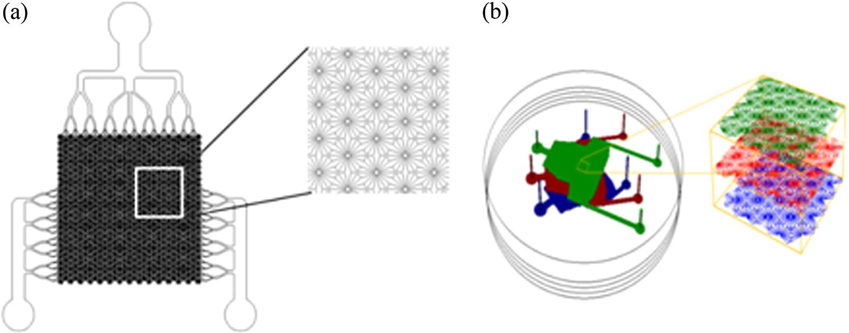 Performance Assessment Of An Opto Fluidic Phantom Mimicking Porcine Rockville Clip Down Monitor Wiring Diagram Jbo 17 7 077008 F002