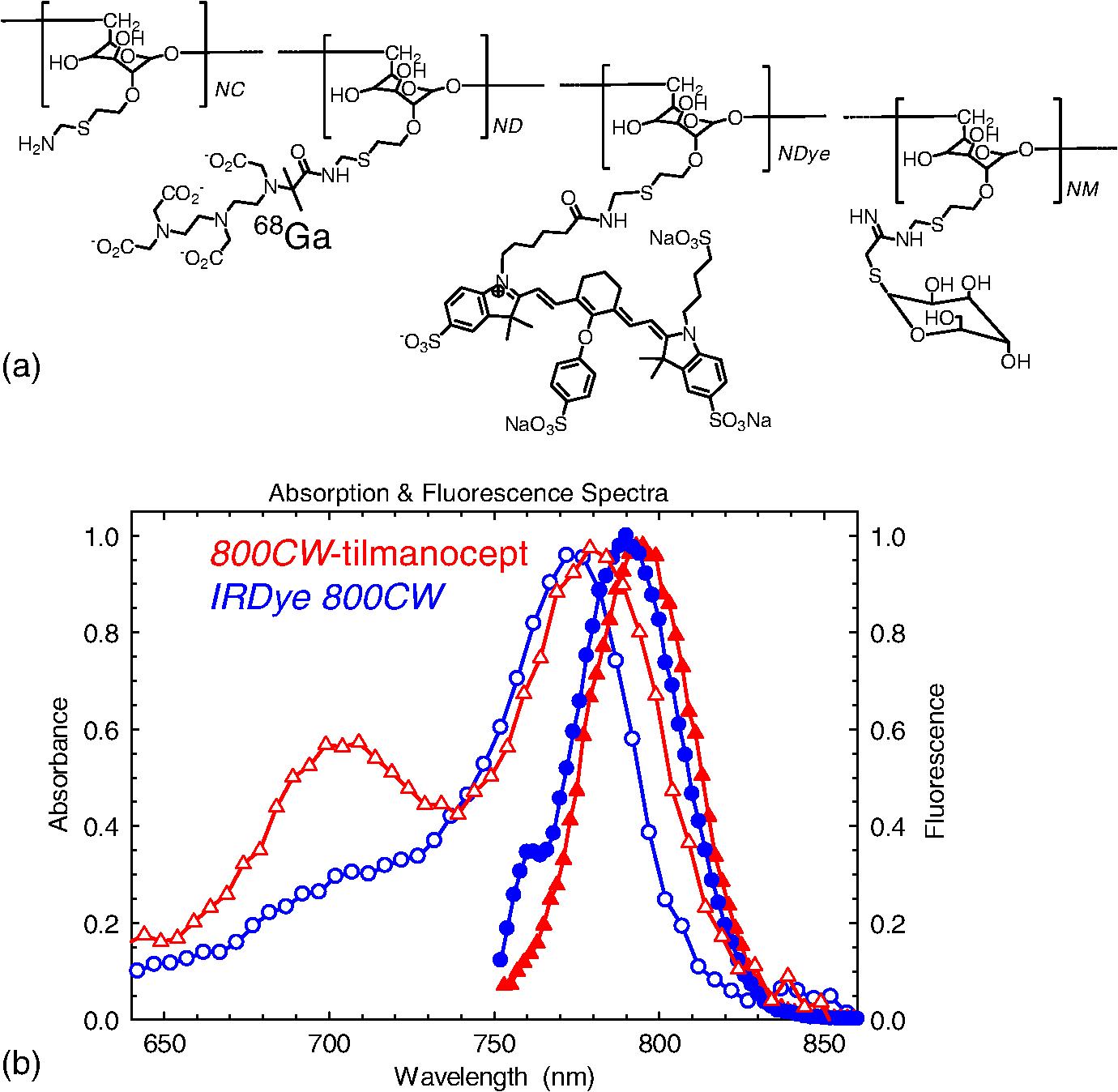 Optimization via specific fluorescence brightness of a
