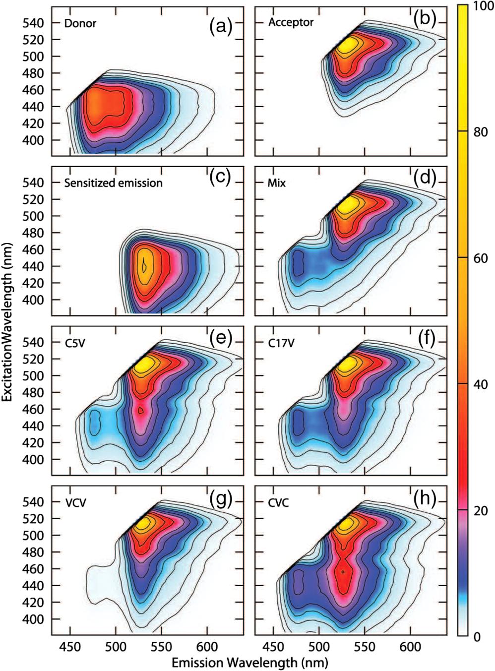 Quantitative Frster Resonance Energy Transfer Efficiency 520 Jcb Wiring Diagram Fig 5