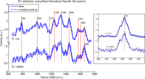 Single bacteria identification by Raman spectroscopy