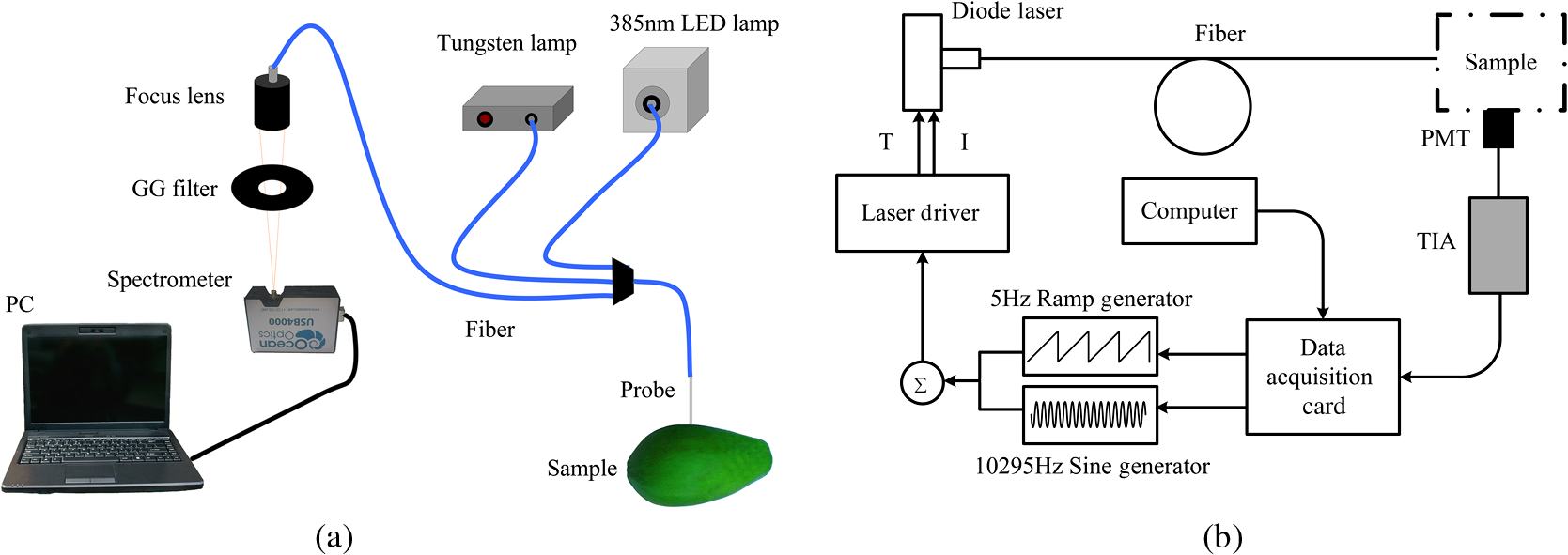 Studies Of Tropical Fruit Ripening Using Three Different Transimpedance Amplifiers Information Engineering360 The Monitoring Second Harmonic Wavelength Modulation Spectroscopy 2f Wms Signal Oxygen Gasmas B Tia Is A Amplifier