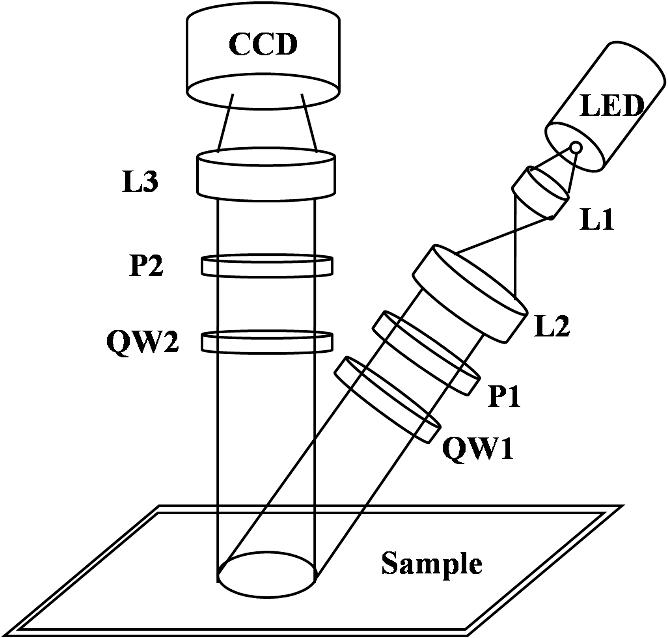 Mueller Matrix Polarimetry For Differentiating