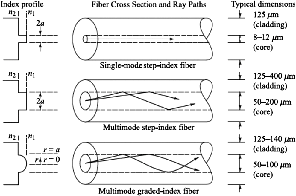 Review Of Diverse Optical Fibers Used In Biomedical