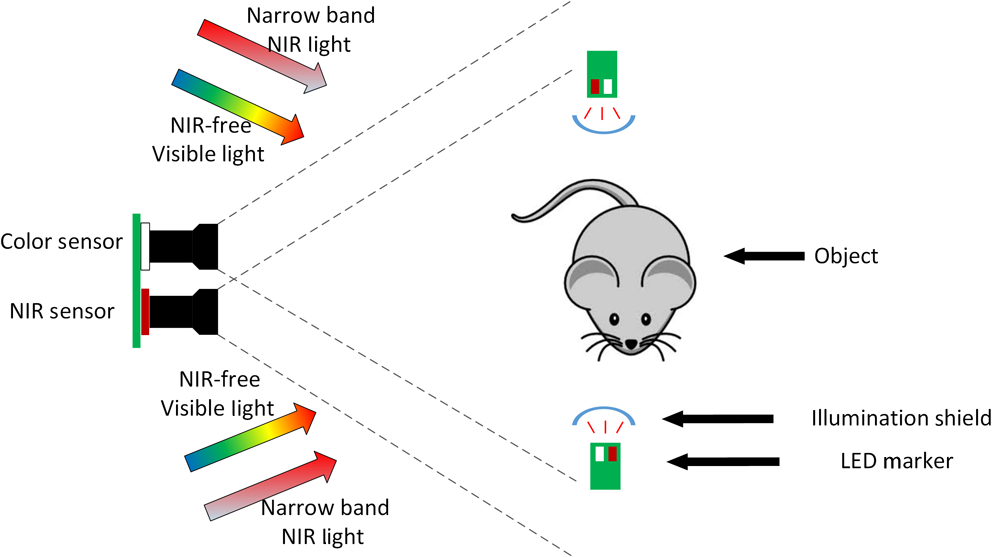 image overlay solution based on threshold detection for a compact near infrared fluorescence