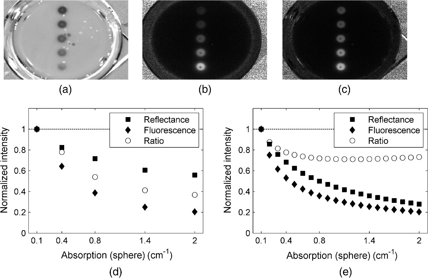 Development of a handheld fluorescence imaging camera for