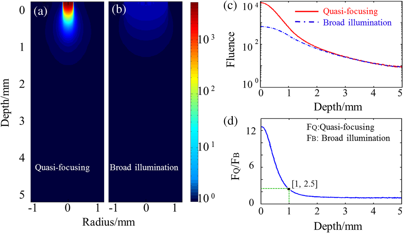 High-speed intravascular spectroscopic photoacoustic imaging at 1000