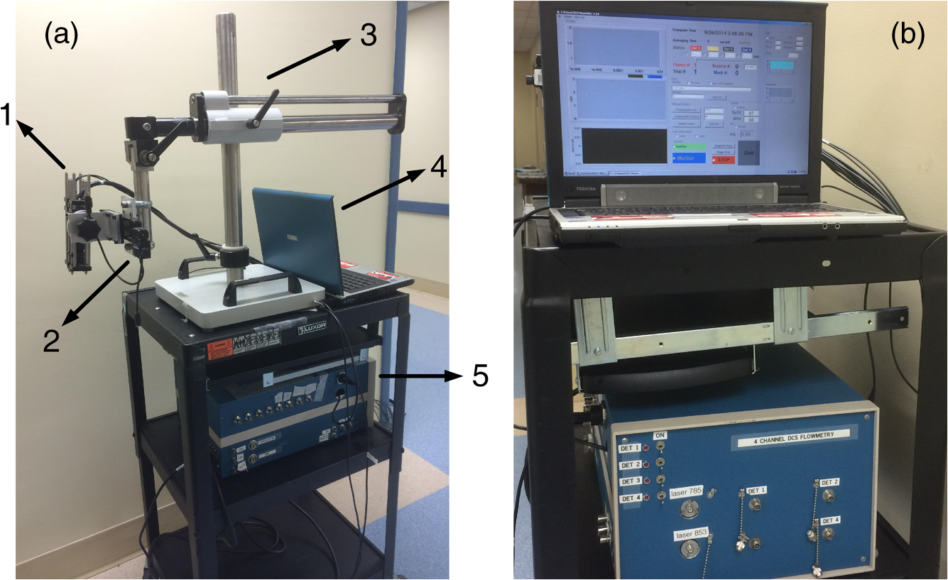 Noncontact diffuse optical assessment of blood flow changes in head