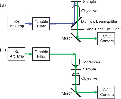 Hyperspectral imaging fluorescence excitation scanning for