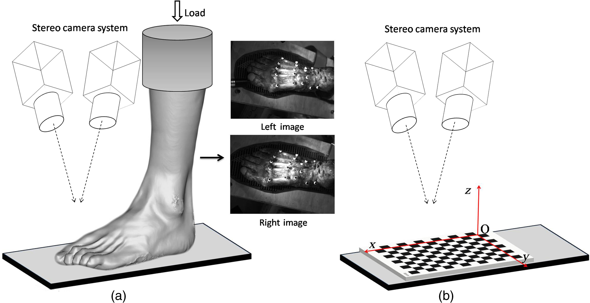 Real Time Three Dimensional Digital Image Correlation For Biomedical Discretecircuits Delabs Schematics Electronic Circuit Schematic Diagrams A The Experimental Setup Used Foot Arch Measurement And B User Defined Coordinate System