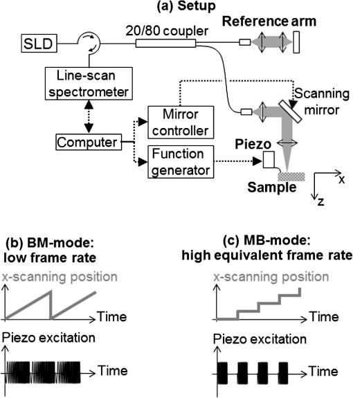 Diffuse shear wave imaging: toward passive elastography