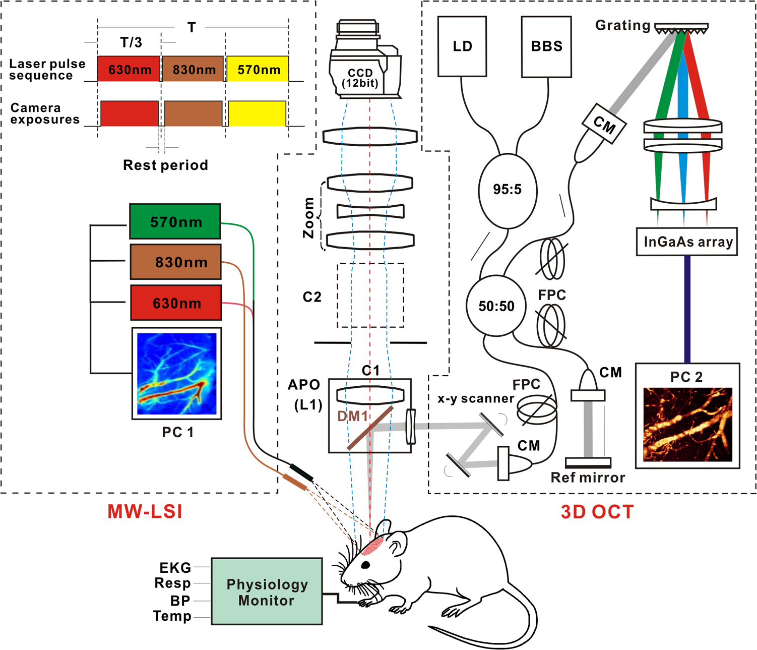 Chronic Cocaine Disrupts Neurovascular Networks And Cerebral Block Diagram Hpcolorlaserjetcp5220 Fig 1 A Schematic