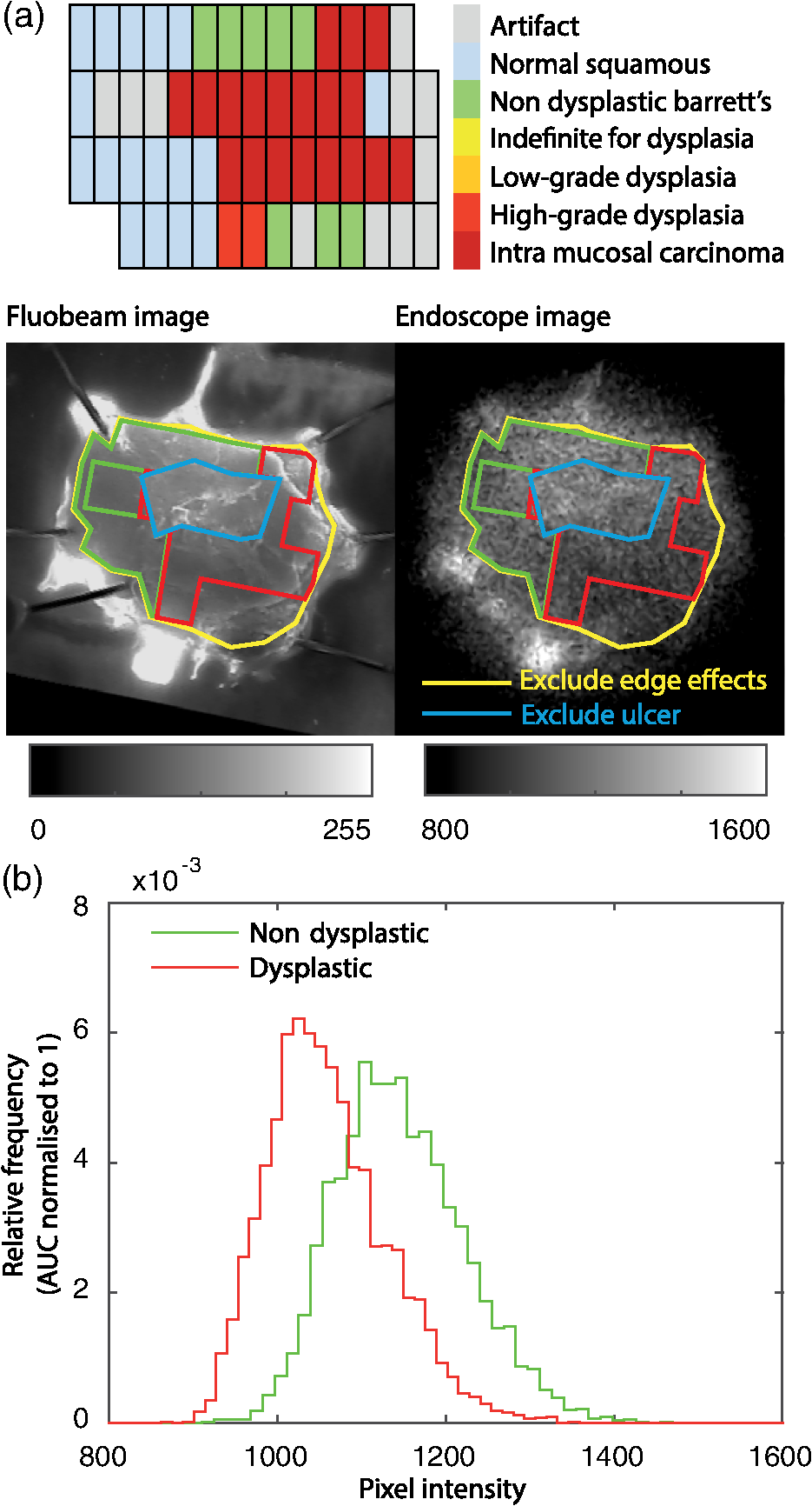 Design and validation of a near-infrared fluorescence