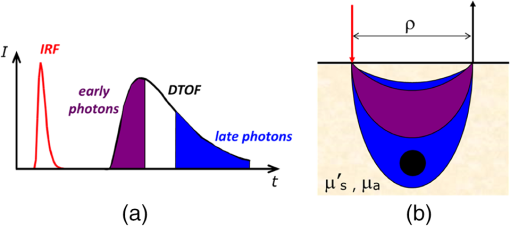 New frontiers in time-domain diffuse optics, a review