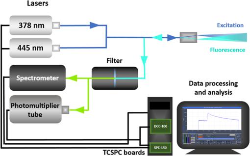 Portable fluorescence lifetime spectroscopy system for in