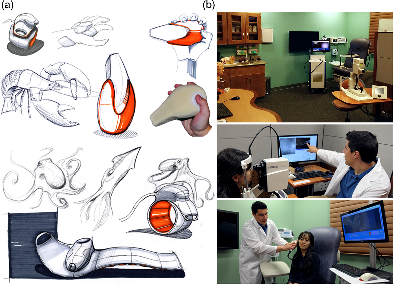 Clinical Translation Of Handheld Optical Coherence Tomography Practical Considerations Batteries And Power Systems The Room Not Only Included Standard Equipment Otoscope Ophthalmoscope Blood Pressure Pulse Oximetry Measurement Sterile