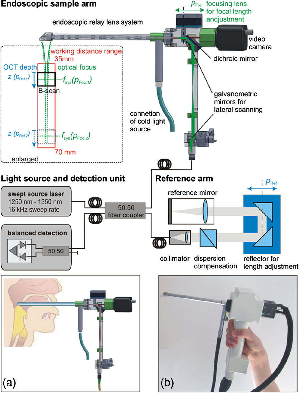Clinical translation of handheld optical coherence tomography