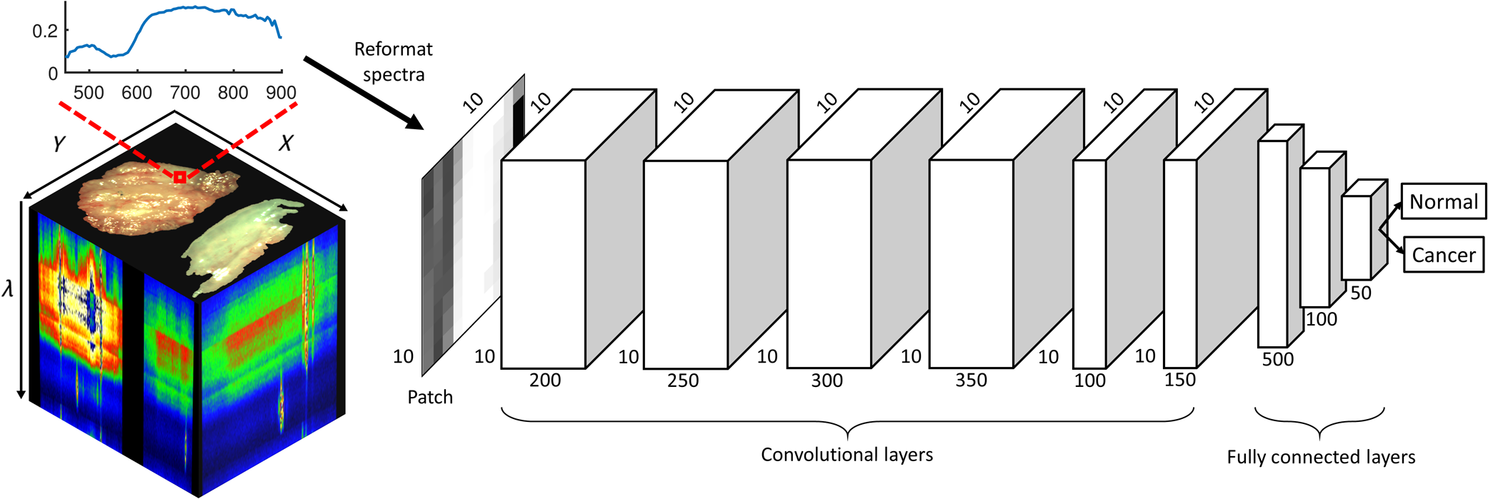 Deep convolutional neural networks for classifying head and neck