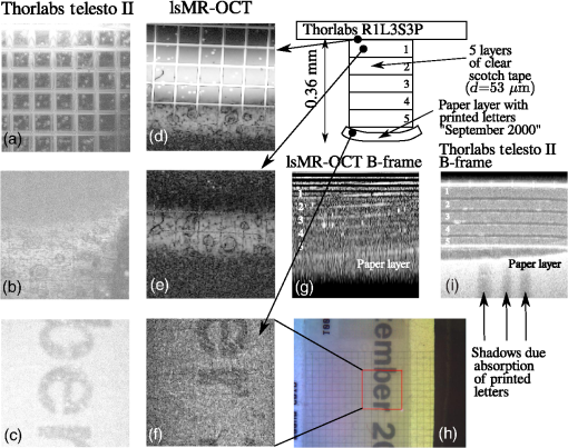 Simultaneous en-face imaging of multiple layers with
