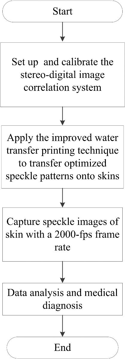 Noninvasive Three Dimensional Full Field Body Sensor For Surface Deformation Monitoring Of Human Body In Vivo