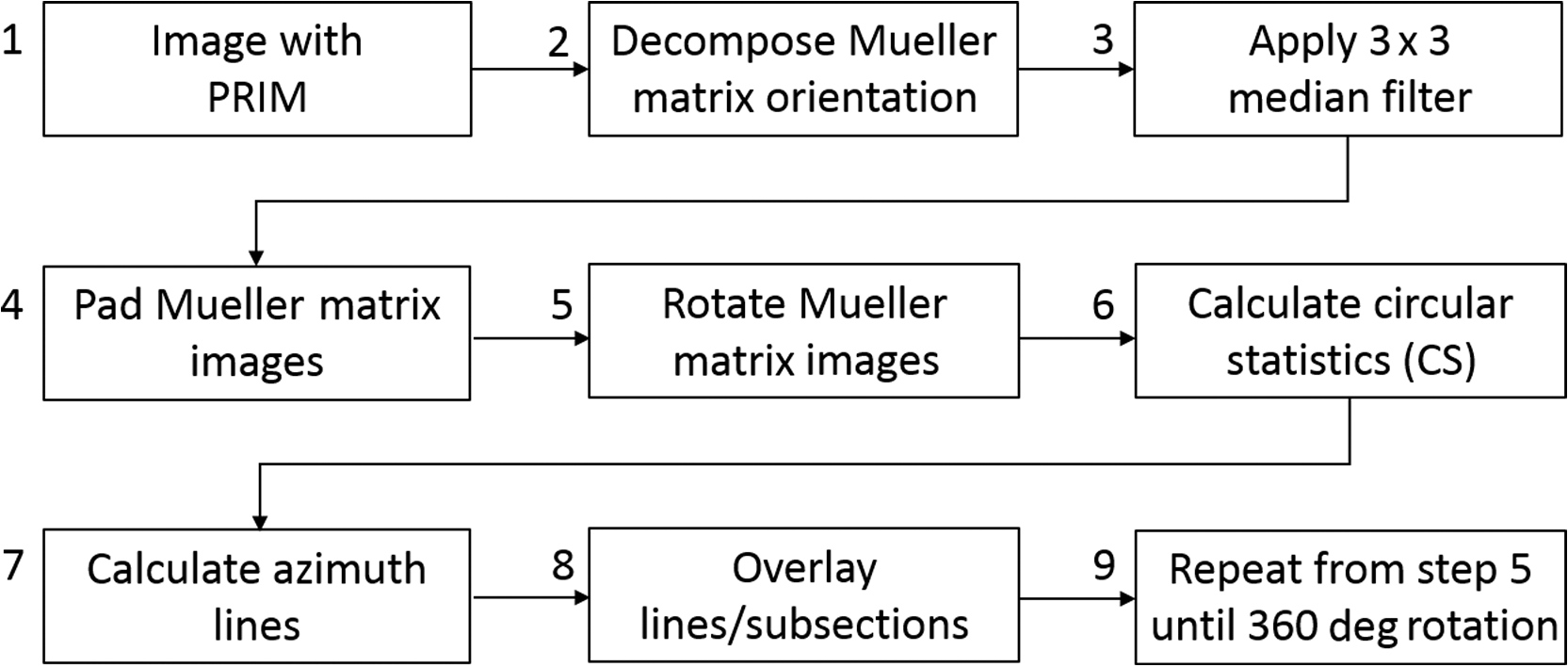 Use of Mueller matrix colposcopy in the characterization of cervical