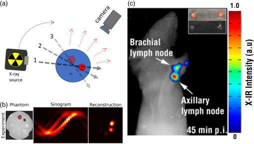 Optical and x-ray technology synergies enabling diagnostic and
