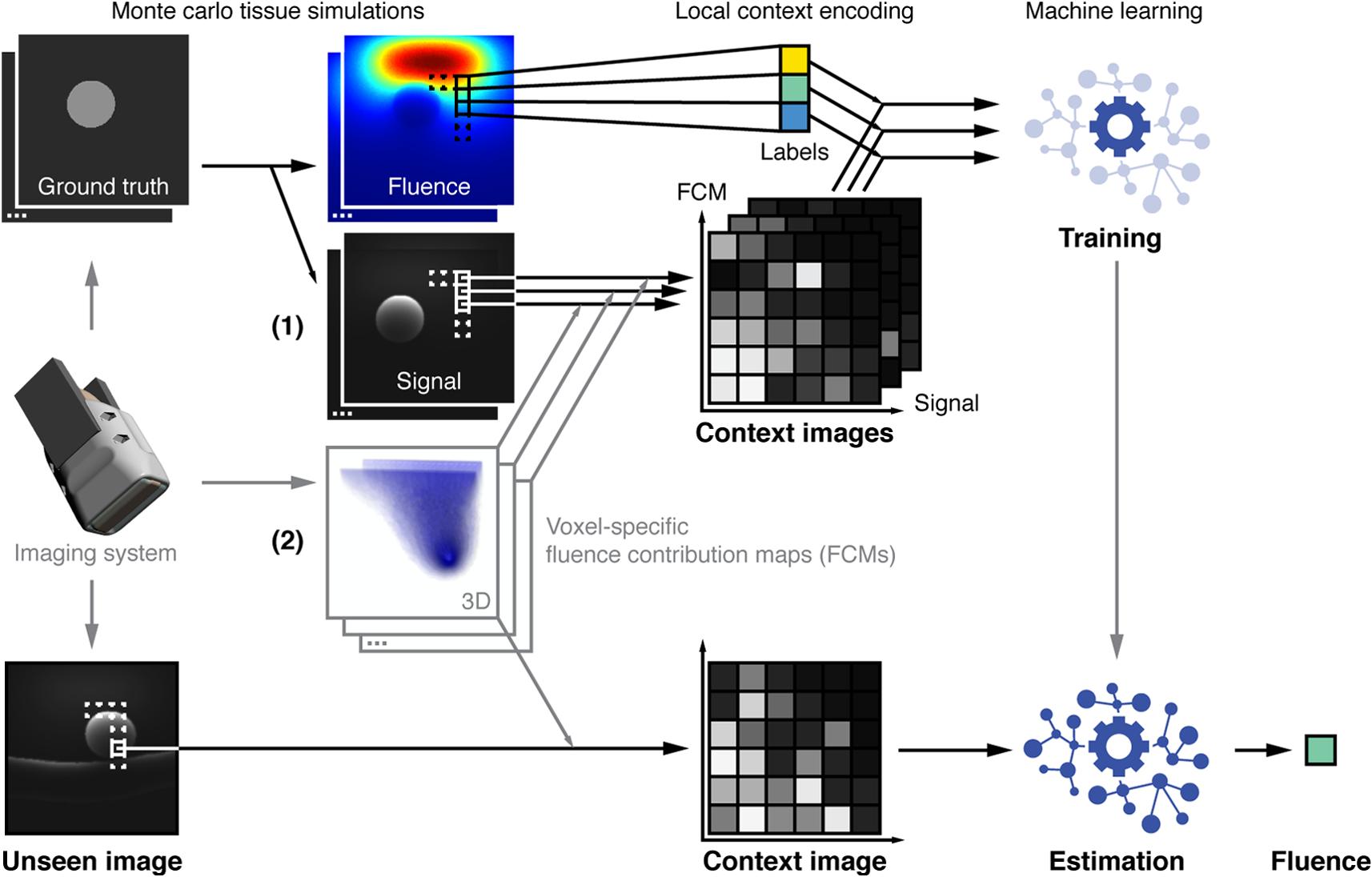 Context encoding enables machine learning-based quantitative