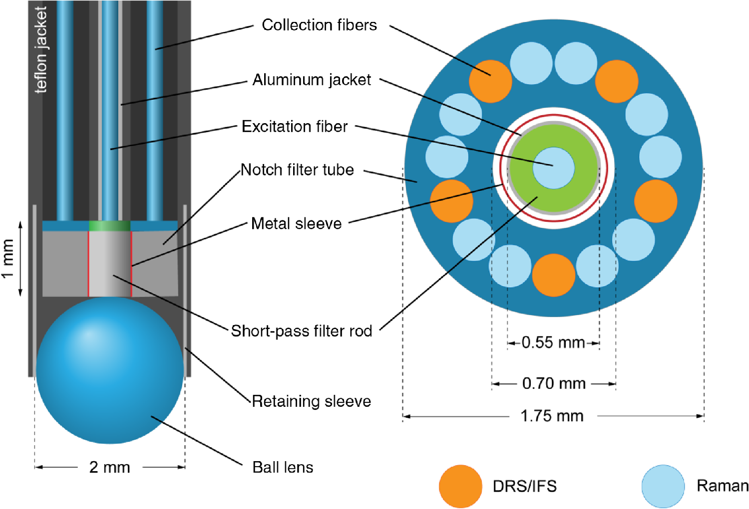 Iin Vivo I Raman Spectroscopy From Basics To Applications Return Light Bulb Diagram Template For Powerpoint The Probe Tip Contains A Module Filter Excitation And Collection Sapphire Ball Lens Optimize Adapted Ref