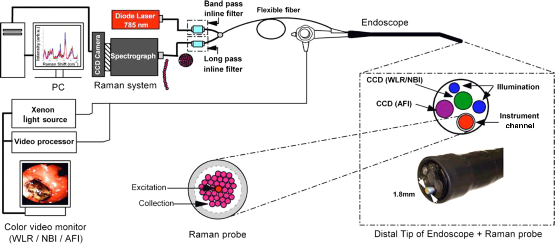 Iin Vivo I Raman Spectroscopy From Basics To Applications Color Lights Organ Circuit Using Cmos Ics Schematic Of The Integrated And Trimodal Endoscopic Imaging System Developed For In Tissue Measurements At Endoscopy
