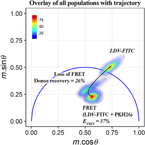 Evaluating integrin activation with time-resolved flow cytometry