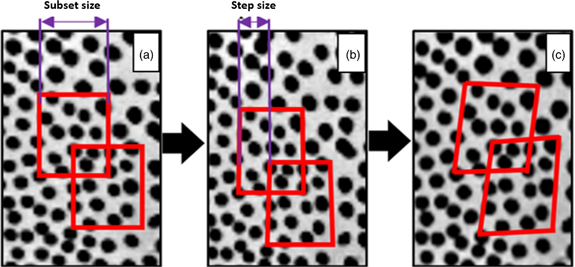 Vibration analysis of healthy skin: toward a noninvasive skin