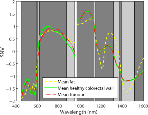 Hyperspectral imaging for tissue classification, a way