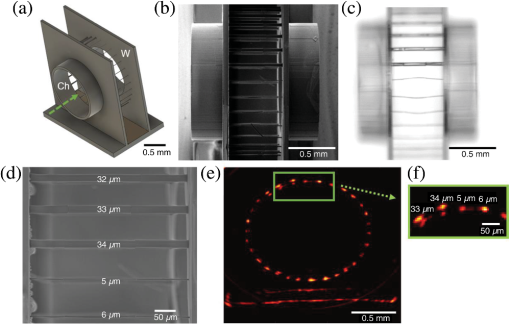 Micron resolution, high-fidelity three-dimensional vascular