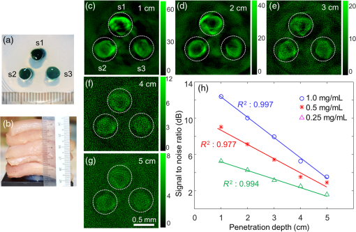 Contrast-enhanced photoacoustic imaging in the second near-infrared