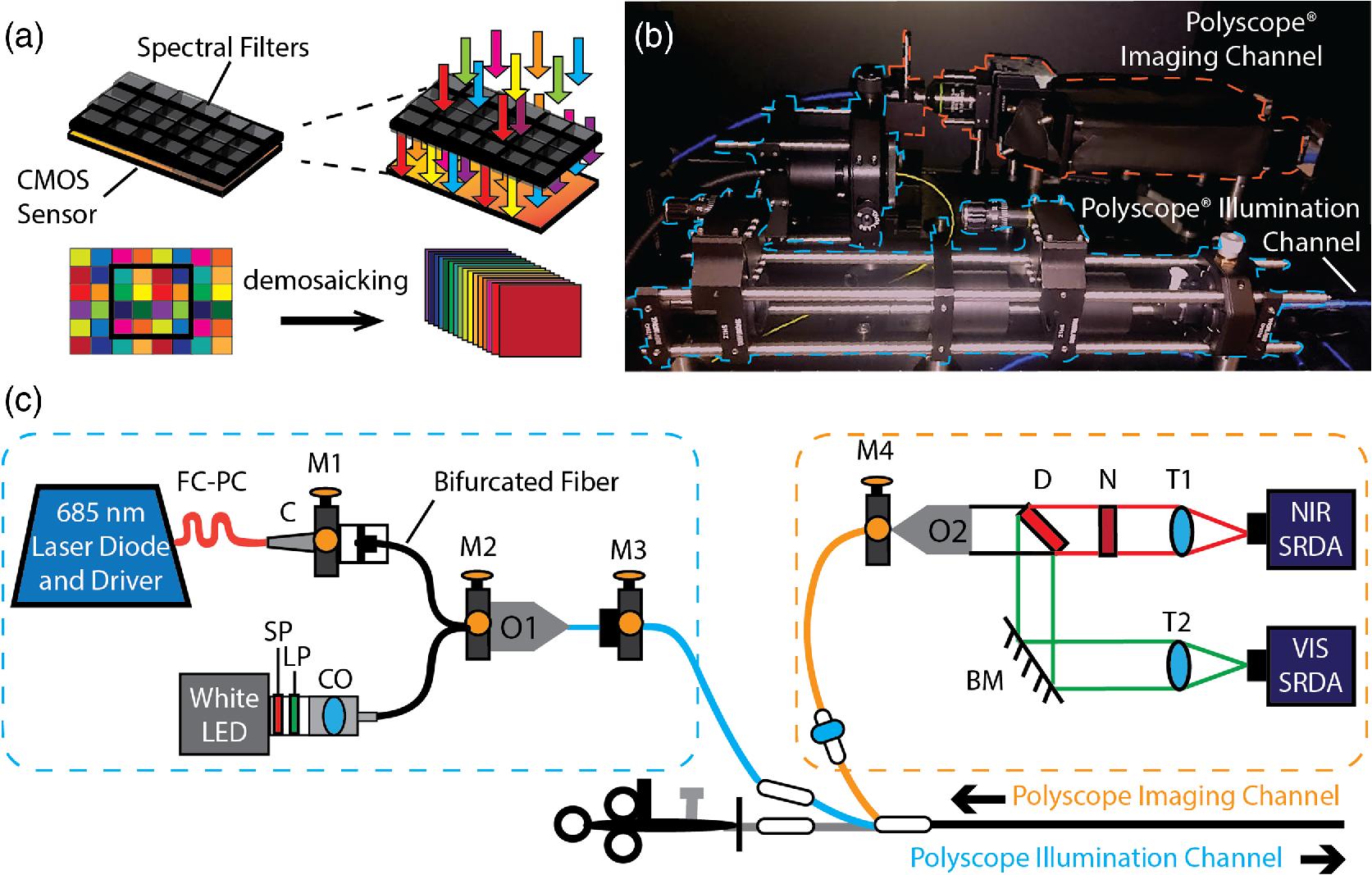 Bimodal Reflectance And Fluorescence Multispectral