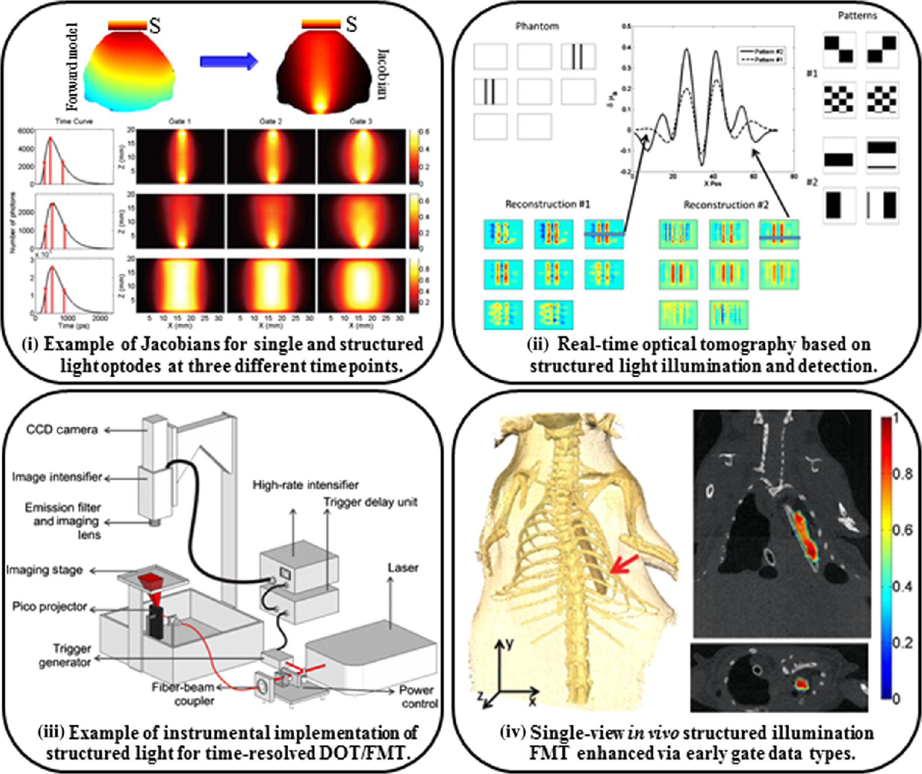 Review of structured light in diffuse optical imaging
